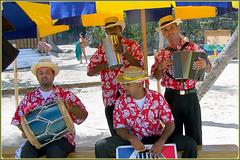 Catalina : accoglienza musicale
