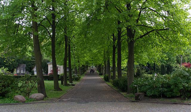 Berlin St Matthäus Kirchfriedhof (#0078)