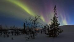 Auroras on fell side