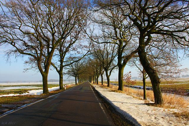 Straße in der Lewitz nach Friedrichsmoor