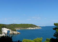 Gargano  - Coast