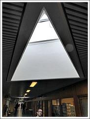 Triangular skylight window
