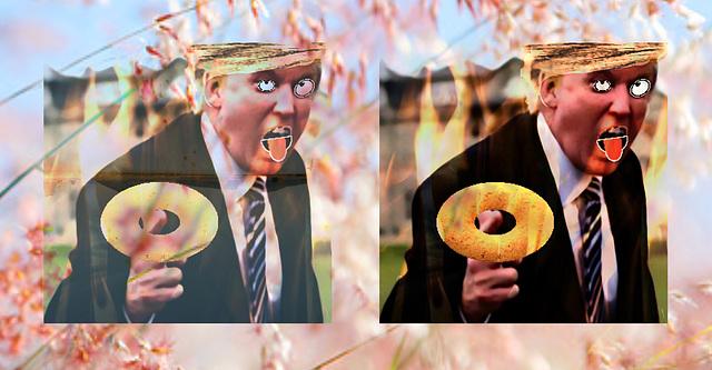 Diplomatic Doughnuts
