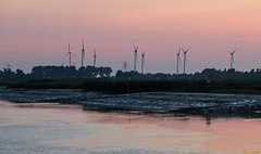 Windkraft, Abendrot und Niedrigwasser