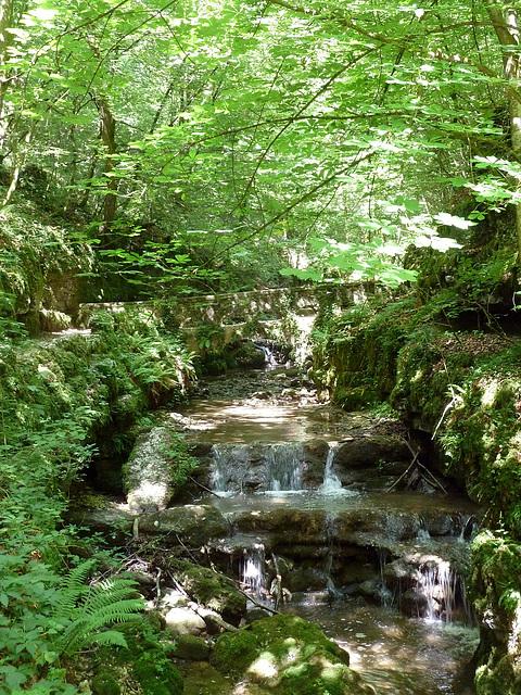 Waldlandschaft mit Verenabach