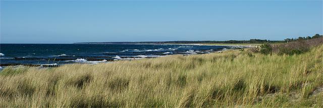 Dünenblick / Vue sur les dunes / View over the dunes