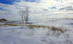 Snow covered dunes on a sunny day