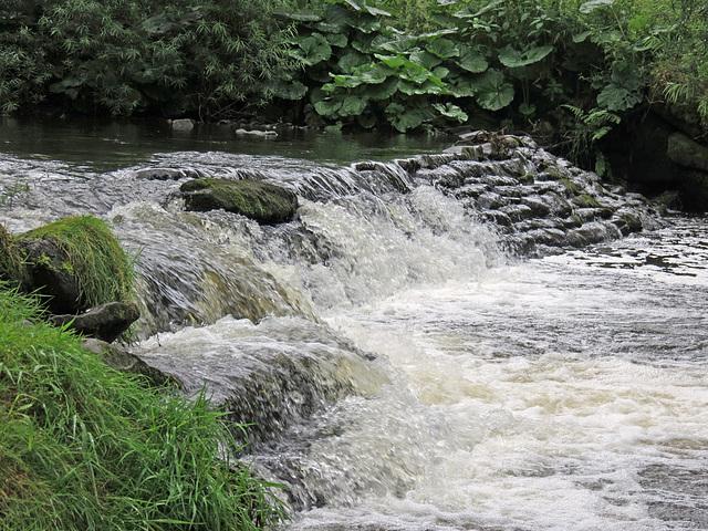 Weir 1