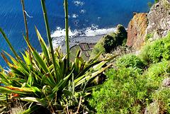 Madeira. Blick vom Cabo Girao zu den Terrassenfelder am Atlantik.   ©UdoSm