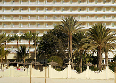 Fuerteventura: Palmen und Hotel