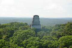 Guatemala, Tikal, Temple V from the Top of Temple IV
