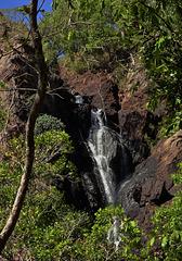 Wangi Falls 4