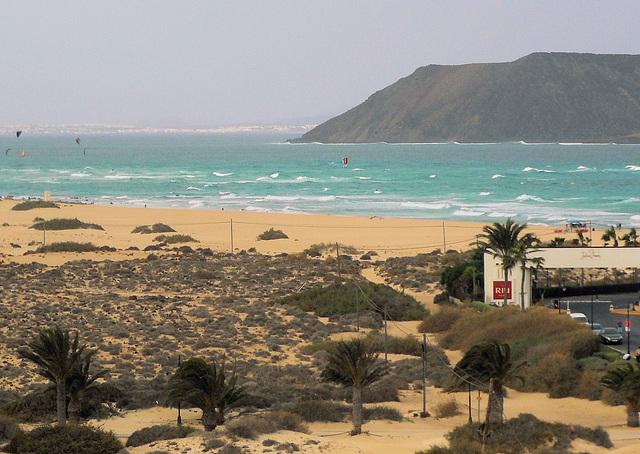 Fuerteventura: Palmen und Meer