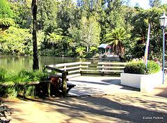 Lake Fencing
