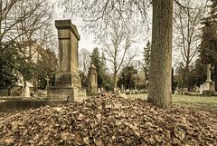 Fangelsbachfriedhof (PiP)