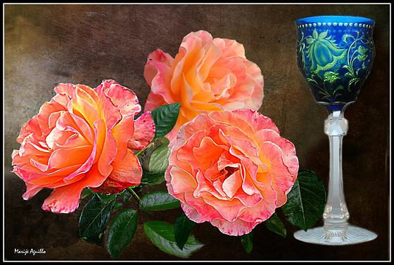 Vino y rosas