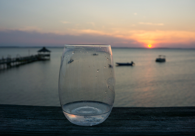 Study, Currituck Sound with glass