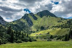 Großtiefenbachalm (1500 m)