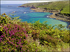 Zennor Coast, Cornwall, at low tide