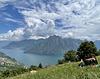 le nuvole del lago
