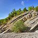 Strati di marne calcaree nel greto del torrente Mozzolatorrente mozzola solignano valtaro geologia appennino parmense parma tosco emiliano strati rocce il viaggiatore senza meta