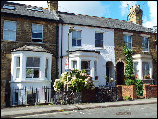 Marlborough Road houses