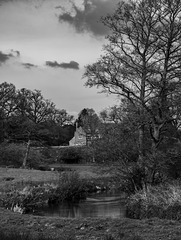 A rural scene on the River Wey