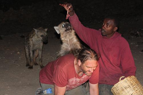 A Hyena Climbs on my Back