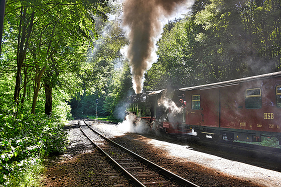 Wernigerode Saxony-Anhalt Germany 1st June 2017