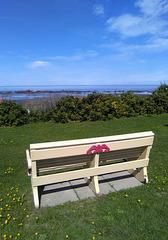 Banc de mer / Sea bench
