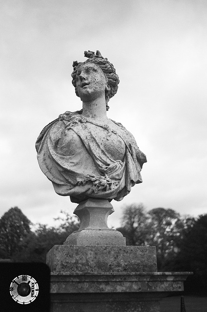 Wimpole bust