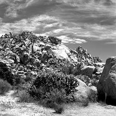 Rockin' Landscape