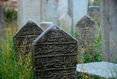 Die Zeugen des Todes