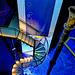 Treppe ins Blaue