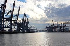 Panorama in den Waltershofer Hafen