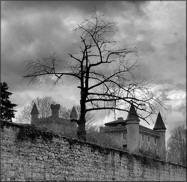 Villemoirieu (38) 7 avril 2019. Le château de Bienassis.