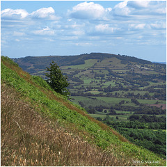 A Skirrid View