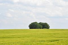 Landschaft ...