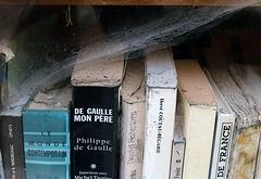 Livres brisés , livres martyrisés ........