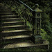 mystery_stair
