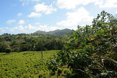 Dominican Republic, Hills of Eastern Cordillera