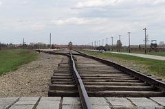 Poland Auschwitz-Birkenau  (#2355)