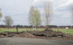 Poland Auschwitz-Birkenau  (#2357)