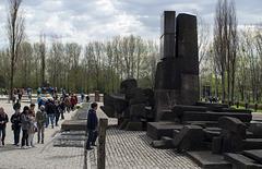Poland Auschwitz-Birkenau  (#2359)