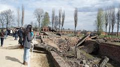Poland Auschwitz-Birkenau  (#2360)