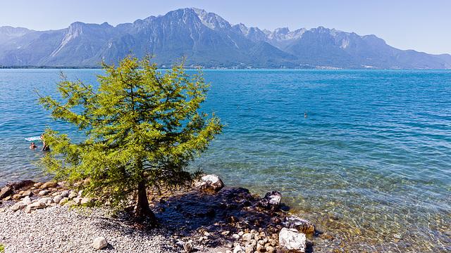 170617 Montreux lac 1