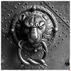 Türklopfer an einem Portal vom Residenzschloss Dresden