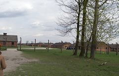 Poland Auschwitz-Birkenau  (#2361)