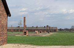 Poland Auschwitz-Birkenau  (#2363)