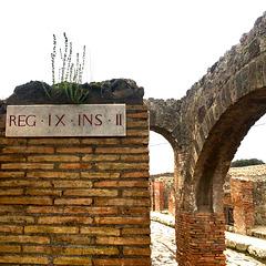 REG - IX - INS -II
